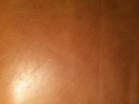 IMG_0443.JPGのサムネイル画像