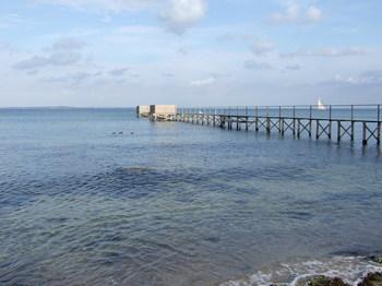 DSCF1650 海辺.jpg