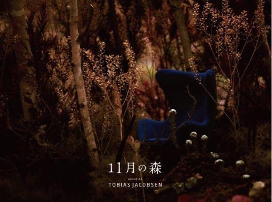 【EVENT】11月の森 ~ petale Hitomi Nakamura ~