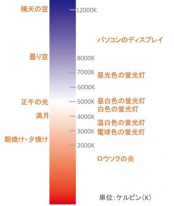 色温度イメージ-768x908.jpg
